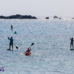 PaddleBoarding Bermuda, June 16 2014-90