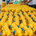 Rubber Ducky Derby Bermuda, June 1 2014-11