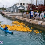 Rubber Ducky Derby Bermuda, June 1 2014-24