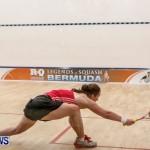 Squash Bermuda, June 13 2014-19