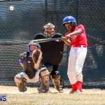 Youth Baseball Bermuda, June 22 2014-10