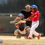 Youth Baseball Bermuda, June 22 2014-14