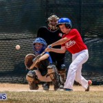 Youth Baseball Bermuda, June 22 2014-33