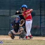 Youth Baseball Bermuda, June 22 2014-39