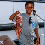 Lionfish Groundswell Bermuda, July 19 2014-6