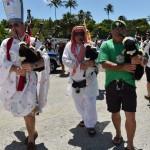 2014 bermuda non mariners a wade p (13)