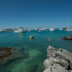 2014 bermuda non mariners a wade p (45)