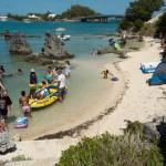 2014 bermuda non mariners a wade p (46)