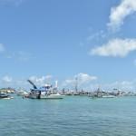 2014 bermuda non mariners a wade p (47)