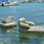 2014 bermuda non mariners race a wade  (4)