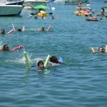2014 bermuda non mariners race a wade  (41)