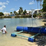 2014 bermuda non mariners race a wade  (47)