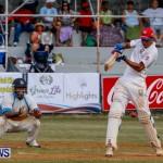 Cup Match Day 1 Bermuda, July 31 2014-108