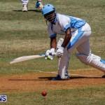 Cup Match Day 1 Bermuda, July 31 2014-11