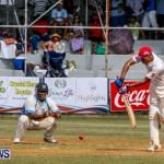 Cup Match Day 1 Bermuda, July 31 2014-117