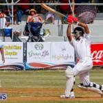 Cup Match Day 1 Bermuda, July 31 2014-119