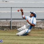 Cup Match Day 1 Bermuda, July 31 2014-124