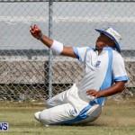 Cup Match Day 1 Bermuda, July 31 2014-125