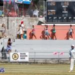 Cup Match Day 1 Bermuda, July 31 2014-126