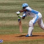 Cup Match Day 1 Bermuda, July 31 2014-13