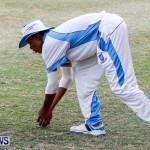 Cup Match Day 1 Bermuda, July 31 2014-132