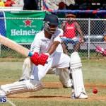 Cup Match Day 1 Bermuda, July 31 2014-134