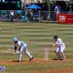 Cup Match Day 1 Bermuda, July 31 2014-15