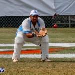Cup Match Day 1 Bermuda, July 31 2014-150