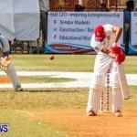 Cup Match Day 1 Bermuda, July 31 2014-172