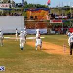 Cup Match Day 1 Bermuda, July 31 2014-174