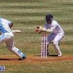 Cup Match Day 1 Bermuda, July 31 2014-19