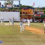 Cup Match Day 1 Bermuda, July 31 2014-192