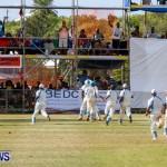 Cup Match Day 1 Bermuda, July 31 2014-197