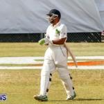 Cup Match Day 1 Bermuda, July 31 2014-200