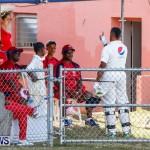 Cup Match Day 1 Bermuda, July 31 2014-204
