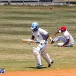 Cup Match Day 1 Bermuda, July 31 2014-30