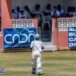 Cup Match Day 1 Bermuda, July 31 2014-43
