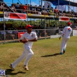 Cup Match Day 1 Bermuda, July 31 2014-5