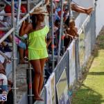 Cup Match Day 1 Bermuda, July 31 2014-62