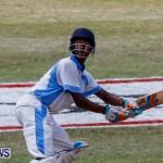 Cup Match Day 1 Bermuda, July 31 2014-67