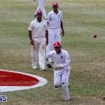 Cup Match Day 1 Bermuda, July 31 2014-68