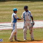 Cup Match Day 1 Bermuda, July 31 2014-70