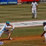Cup Match Day 1 Bermuda, July 31 2014-8