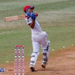 Cup Match Day 1 Bermuda, July 31 2014-81