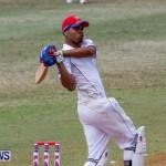 Cup Match Day 1 Bermuda, July 31 2014-82