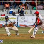 Cup Match Day 1 Bermuda, July 31 2014-97