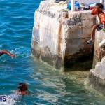 Non Mariners Bermuda, August 3 2014-137