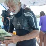 ocean vet turtle tagging aug 2014 (8)