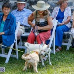 Blessing Of The Animals Service Bermuda, October 5 2014-17