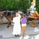 Blessing Of The Animals Service Bermuda, October 5 2014-31